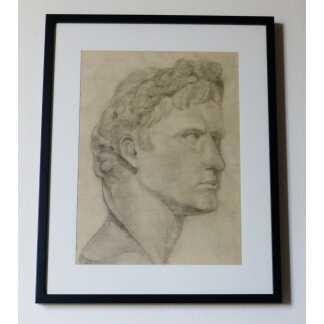 Dessin Au Fusain à l'Antique, Buste d'Apollon, XIX ème